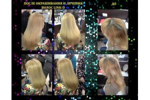ОТЧЕТ №42 мастер-класса Натальи Рогатинской: новые техники окрашивания волос с помощью ELGON
