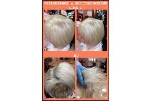 ОТЧЕТ №37 Окрашивания волос крем-краской ELGON с использованием инновационного средства LINK-D, с-н Парадиз, Бендеры